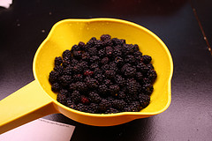 blackberry cobbler prep picture 3