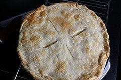 Chicken or Turkey Pot Pie Recipe picture end