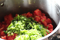 raw salsa mix