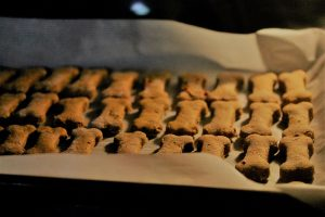 baking-dog-treats